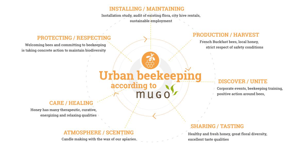 mugo_infographie_apiculture2_EN