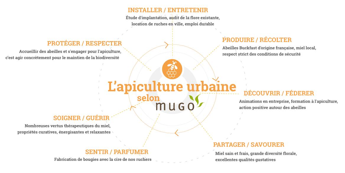 mugo_infographie_apiculture2