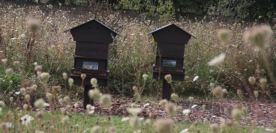 slide_02_apiculture_urbaine