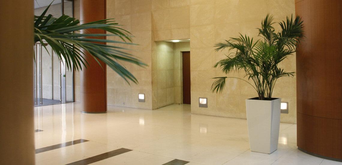 slide_02_location_plantes