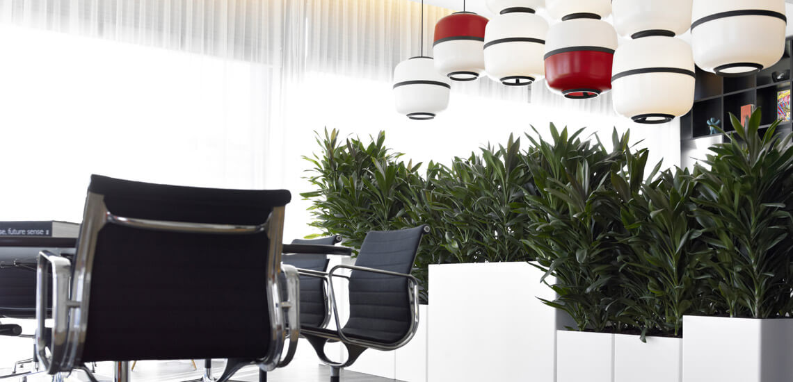 location_plantes_03