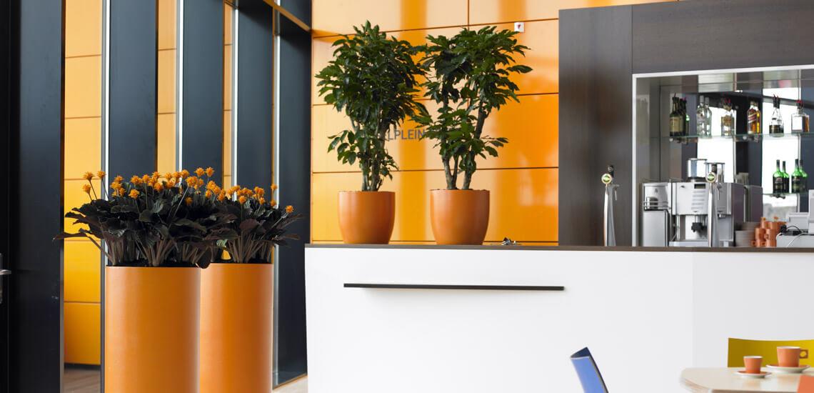location_plantes_05