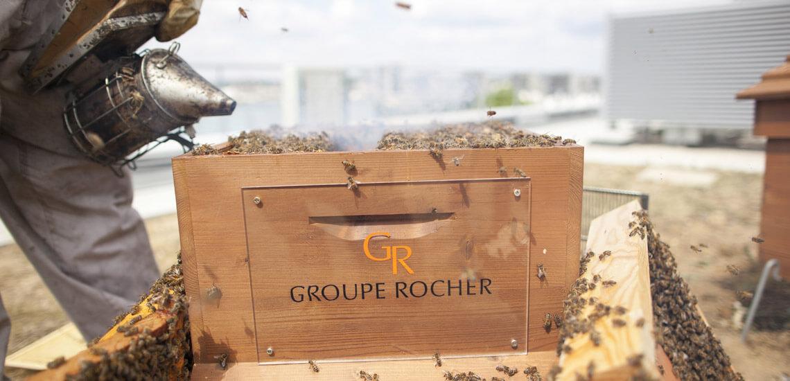 rucher_grouperocher
